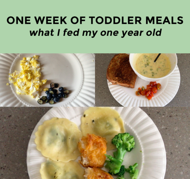 What I Fed My 1 Year Old Toddler in a Week