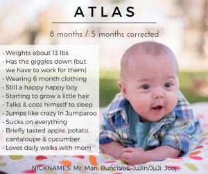 Atlas | 8 Months
